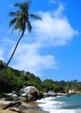 Tropikalna plaży i turkusu woda w Tayrona parku narodowym zdjęcia stock
