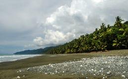 Tropikalna plaża - Costa Rica Obrazy Stock