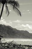 Tropikalna plaża - Costa Rica Zdjęcie Royalty Free