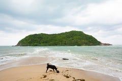 Tropikalna plaża na Ko Ma Zdjęcie Stock