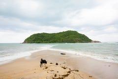 Tropikalna plaża na Ko Ma Obrazy Stock