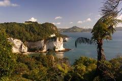 tropikalna plażowa katedralna zatoczka Obraz Royalty Free