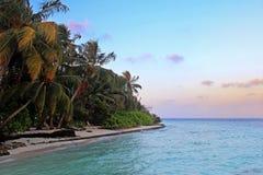 Tropikalna plaża z drzewkami palmowymi Obraz Royalty Free
