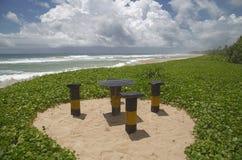 tropikalna plaża z drzewkami palmowymi i oceanem Zdjęcie Royalty Free