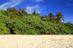Tropikalna plaża Obrazy Royalty Free