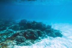Tropikalna przyroda z koralami i piaskiem jest podwodna Denny życie w oceanie indyjskim Zdjęcie Stock