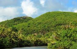 Tropikalna rzeka i góry Fotografia Royalty Free