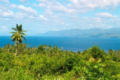 Tropikalna sceneria z drzewka palmowego morzem i lasem Filipiński wyspy chmielenie Obraz Royalty Free