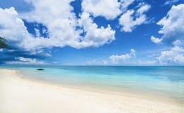 Tropikalna sceneria z zadziwiać plaże Mauritius wyspa zdjęcia royalty free