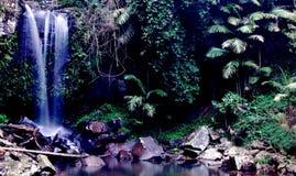 tropikalna siklawa Obraz Royalty Free