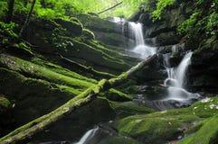Tropikalna siklawa przy lasem tropikalnym Zdjęcie Stock