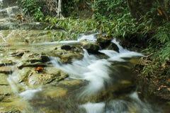 Tropikalna siklawa w lesie tropikalnym Obraz Royalty Free