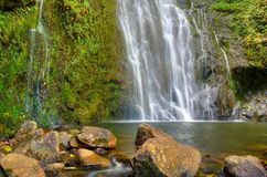 tropikalna spadek woda obraz stock