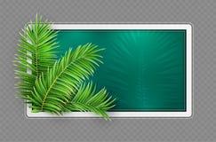 Tropikalna sztandar rama Projekta uk?ad zostaw zielony d?onie r?wnie? zwr?ci? corel ilustracji wektora ilustracja wektor