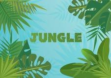 Tropikalna wektorowa szablonu sztandaru ilustracja Egzot rośliny na bblue nieba tle, tropikalnego lasu deszczowego projekt z zwro Fotografia Stock