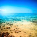 Tropikalna woda morska Zdjęcie Stock