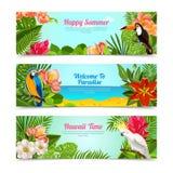 Tropikalna wyspa kwitnie horyzontalnych sztandary ustawiających Zdjęcia Stock