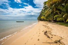 Tropikalna wyspa - morze niebo i drzewka palmowe, Obraz Stock