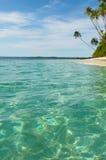 Tropikalna wyspa - morze niebo i drzewka palmowe, Fotografia Royalty Free
