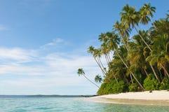 Tropikalna wyspa - morze niebo i drzewka palmowe, Zdjęcia Royalty Free