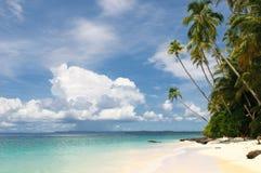 Tropikalna wyspa - morze niebo i drzewka palmowe, Obrazy Stock