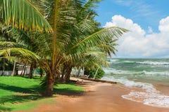 Tropikalna wyspa w oceanie indyjskim Obrazy Royalty Free