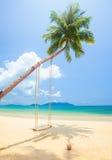 Tropikalna wyspy plaża z kokosowymi drzewkami palmowymi i huśtawką Obrazy Stock