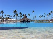 tropikalne basen popływać Zdjęcie Royalty Free