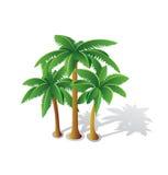 tropikalne dłonie ilustracja wektor