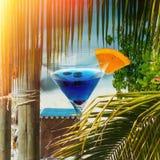Tropikalne lata tła palmy i koktajl na plaży obrazy stock