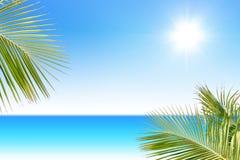tropikalne morza Zdjęcia Stock