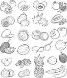 Tropikalne owoc ilustracji