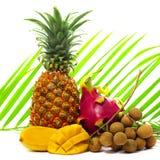 Tropikalne owoc na zielonym palmowym liściu Zdjęcia Royalty Free