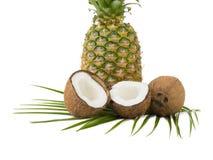 Tropikalne owoc odizolowywać na białym tle zdjęcia royalty free