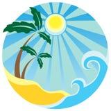 Tropikalne palmy Fotografia Stock