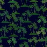 Tropikalne palmy Bezszwowe Fotografia Stock