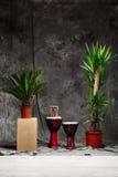 Tropikalne rośliny i bębeny nad popielatym tłem obraz stock