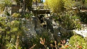 Tropikalne rośliny w parku przy Monaco, Cote D'Azur Francja zbiory wideo