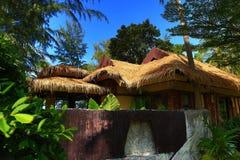Tropikalne rośliny w ziemiach hotel, plaża i drzewa, Phra Ae plaża, Ko Lanta, Tajlandia Obrazy Stock