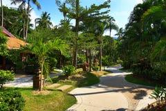 Tropikalne rośliny w ziemiach hotel, plaża i drzewa, Phra Ae plaża, Ko Lanta, Tajlandia Obrazy Royalty Free