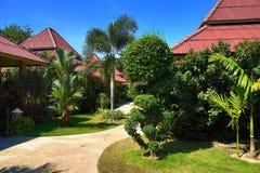 Tropikalne rośliny w ziemiach hotel, plaża i drzewa, Phra Ae plaża, Ko Lanta, Tajlandia Zdjęcia Stock