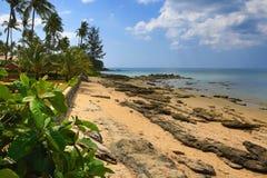 Tropikalne rośliny w ziemiach hotel, plaża i drzewa, Phra Ae plaża, Ko Lanta, Tajlandia Obraz Royalty Free