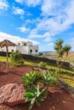 Tropikalne rośliny na Mirador de Los Valle punkcie widzenia Obrazy Royalty Free