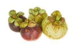 Tropikalnej owoc mangostan Obrazy Royalty Free
