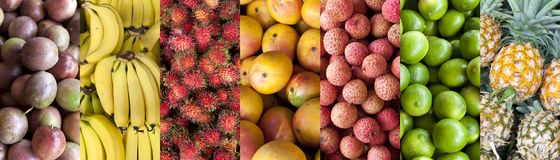 Tropikalnej owoc sztandaru Karmowy tło obraz stock