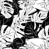 Tropikalni czarny i biały drzewko palmowe liście Wektorowego lata bezszwowy wzór ilustracji