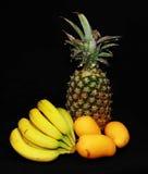 tropikalni kolor żółty Zdjęcie Royalty Free
