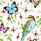 Tropikalni kwiaty, egzotyczny ptak i jaskrawi motyle, bezszwowy kwiecisty wzoru watercolour Obrazy Stock
