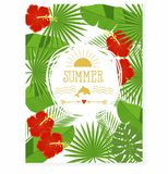 Tropikalni kwiaty i liście - poślubnik, drzewko palmowe, Monstera, plumeria Obraz Royalty Free