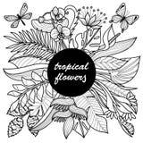 Tropikalni kwiaty Wyśmiewają Up Obrazy Stock